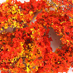 WILD BUSHES - AUTUMN GLORY (20 PCS)