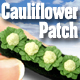 O-SCALE CAULIFLOWER GARDEN ROW