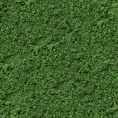 MEDIUM GRASS GREEN FINE- 48 OZ. ECO PAK