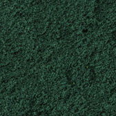 DARK FOREST GREEN FINE- 48 OZ. ECO PAK