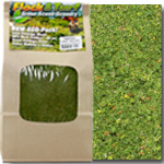 GREEN GRASS BLEND- 48 OZ. ECO PAK