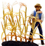 NEW!! O-SCALE DRIED AUTUMN CORN STALKS