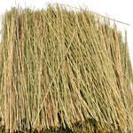 NATURAL STRAW TONE FIELD GRASS/15g.