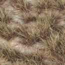 4/6MM BURNT GRASS DESERT TUFT SILFLORETTES