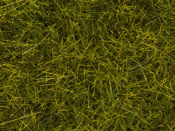 NEW! 12MM NATUR+ LATE SUMMER PASTURE MAT 11