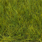 NEW! 6MM MEADOW GREEN STATIC GRASS 50g/1.7 oz.