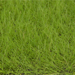 6MM MEDIUM GREEN LOOSE STATIC GRASS 50g/1.7oz.