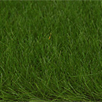 6MM DARK GREEN LOOSE STATIC  GRASS 50g/1.7 oz.