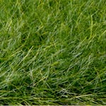 12MM XL MEDIUM GREEN STATIC GRASS 40g/1.4 oz.