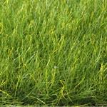 12MM XL SPRING GREEN STATIC GRASS 40g./1.4 oz.