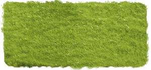 2MM SPRING STATIC GRASS