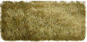 4MM AUTUMN STATIC GRASS