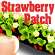 O-SCALE STRAWBERRY PATCH