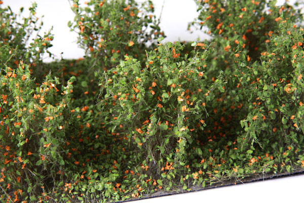 2CM - 3CM LOW ORANGE BUSHES/10 PCS.