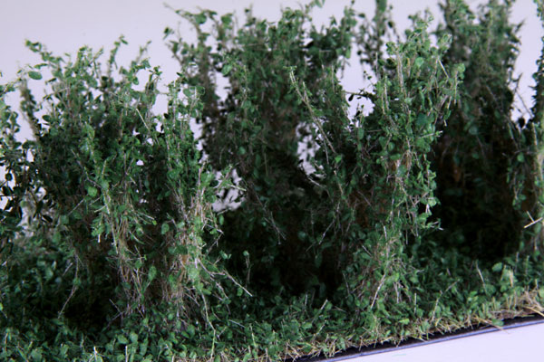 3CM - 4CM HIGH DARK GREEN BUSHES / 10 PCS.