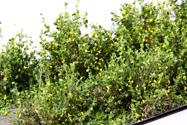 2CM - 3CM LOW YELLOW SHRUBS / 10 PCS.
